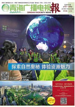 青海广播电视报电子报 电子书制作软件